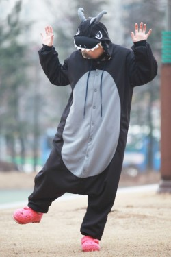 Black Dragon Onesie 2015 Kigurumi Pajamas
